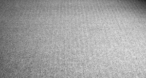 Carpet Shift Marks