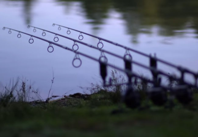 Daiwa Powermesh Rod Review