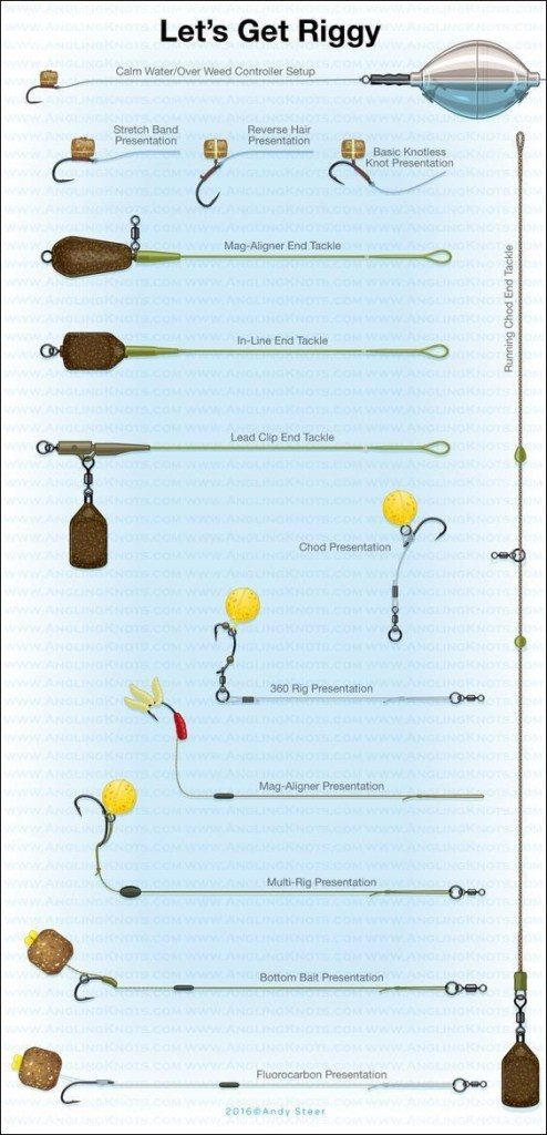Carp rig diagram for beginners