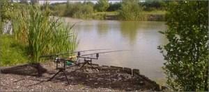 court farm fishing