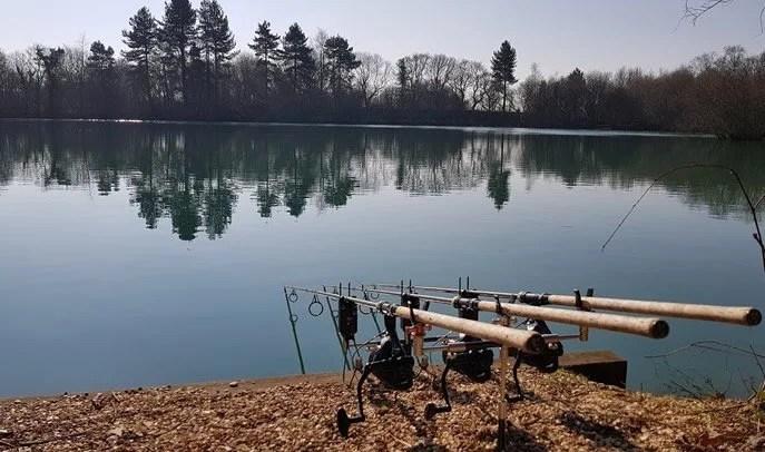 Lin Brook Carp Lake
