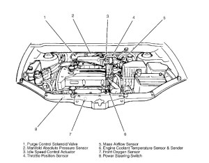 Hyundai Santa Fe Engine Diagram | Automotive Parts Diagram