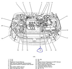 2004 Mazda Tribute Engine Diagram | Automotive Parts