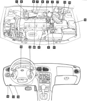 2000 Hyundai Elantra Engine Diagram | Automotive Parts