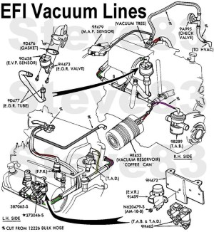 1999 Ford F150 Engine Diagram | Automotive Parts Diagram