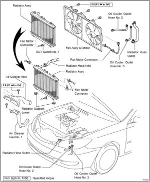 2000 Toyota Camry Engine Diagram | Automotive Parts