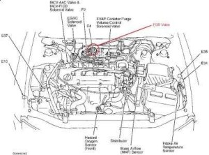2003 Nissan Altima Engine Diagram | Automotive Parts