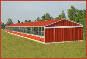 llama barns Hen house