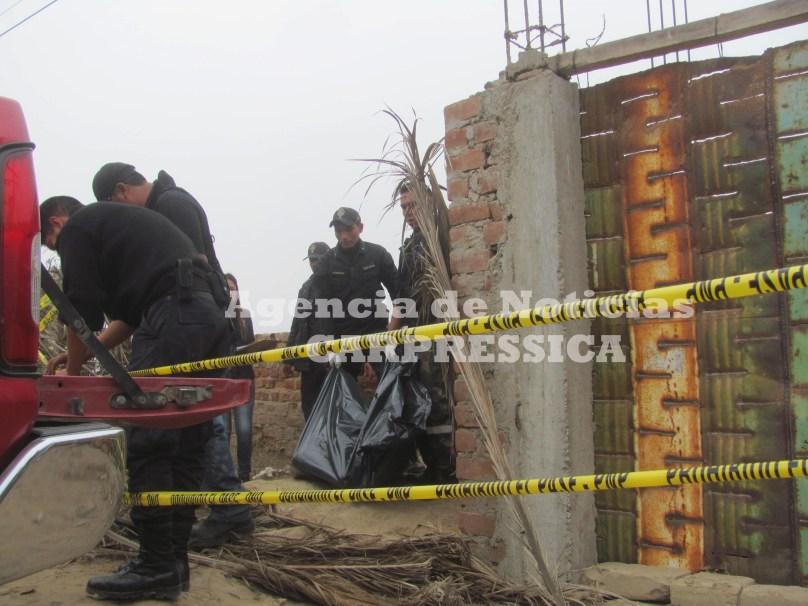 Agencia de Noticias CARPRESSICA 4