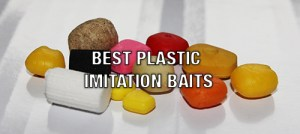 Best plastic baits for carp fishing