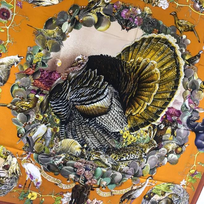 Faune et Flore Du Texas - Texas Wildlife RARE HERMES Silk Scarf (1)