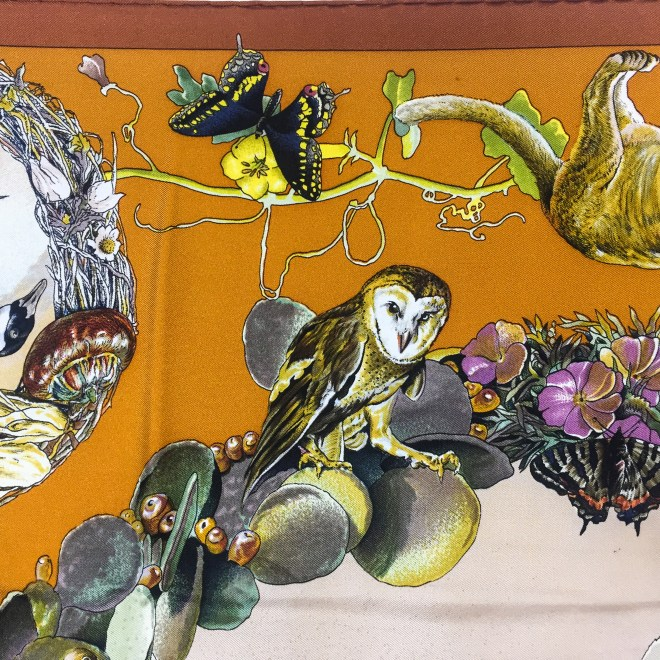 Faune et Flore Du Texas - Texas Wildlife RARE HERMES Silk Scarf (8)
