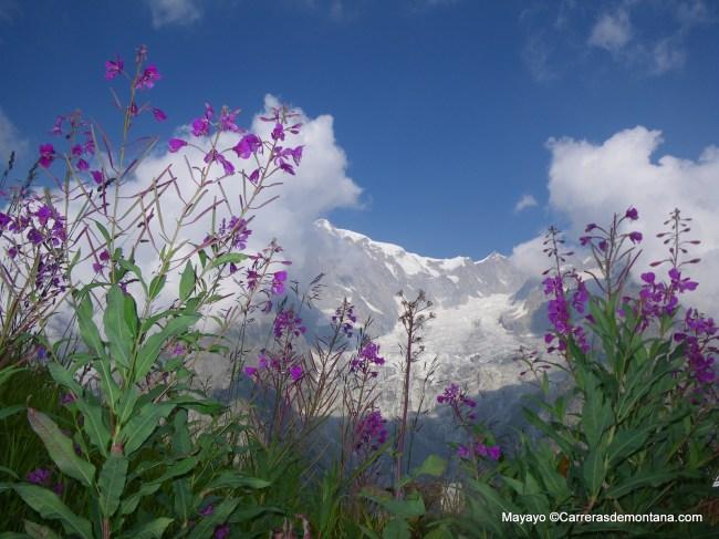 El paisaje alpino italiano, protagonista cada año del Tor des Geants. Foto: mayayo.