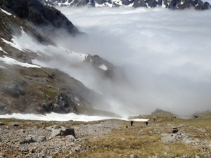 travesera picos europa 2013 fotos (9)