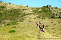 tactika trail sierra del rincon 2015 (8)