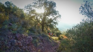 carreras montaña valencia 2016 trail almedijar (4)