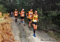 roncesvalles zubiri fotos 2016