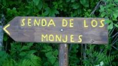 ultra sanabria trail running castilla y leon (7)