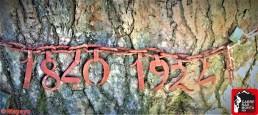 pino de la cadena rutas cercedilla sierra de guadarrama (15)