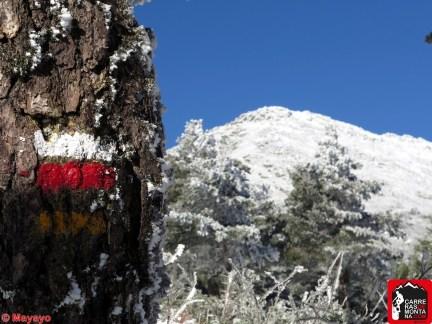 valle fuenfria ruta trail running invernal (36)