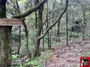 Rutas Montseny trail running