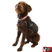 Ultimate Direction Dog Vest 2
