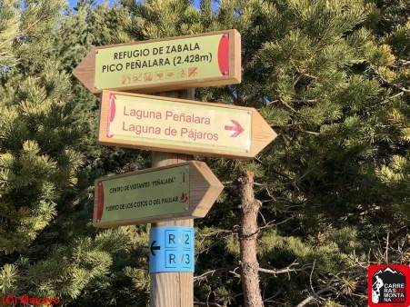 peñalara y cresta de claveles. ruta mayayo (44)