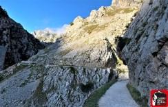 ruta del cares picos de europa mayayo 1 (47) (Copy)