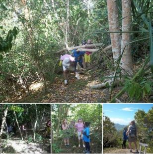 Guided tours over Carriacou island.