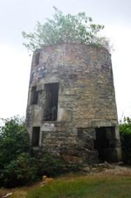 Windmill at Mt. Royal.