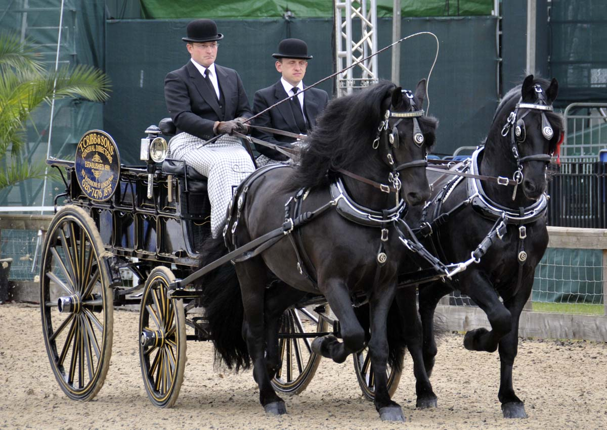 these were the champions in the light-trade turnout class: T. Cribbs and Sons' funeral service delivery van (they won the class last year as well)