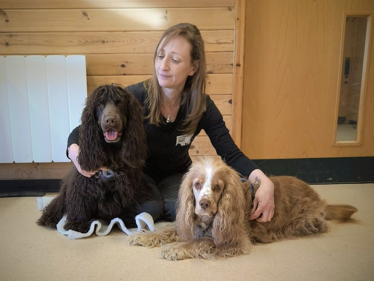 Carrie sits with her animal therapy trained dogs, Leo and Barnaby