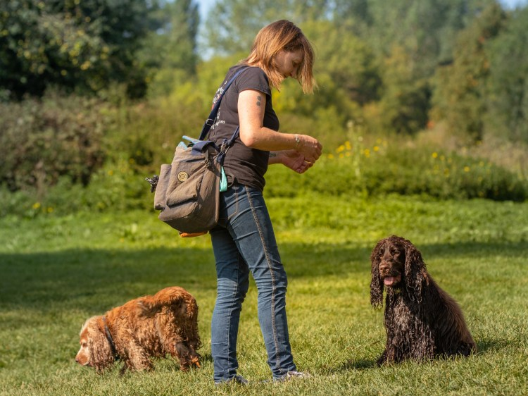Carrie walks with Leo and Barnaby