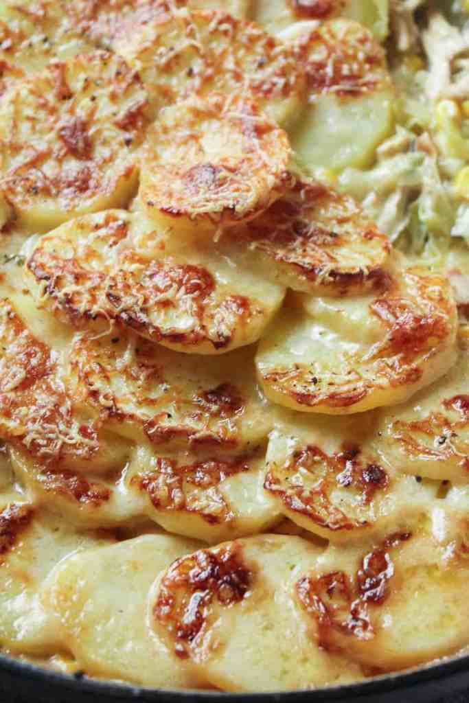 Close up of sliced potatoes cooked in a creamy white wine sauce with shredded chicken. Topped with cheese and baked until crispy.