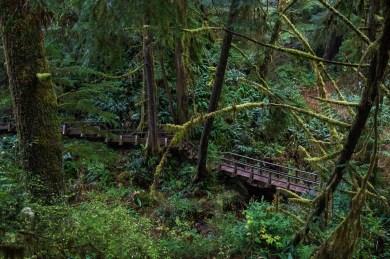 Schooner Cove Trail, Tofino, Ucluelet, British Columbia
