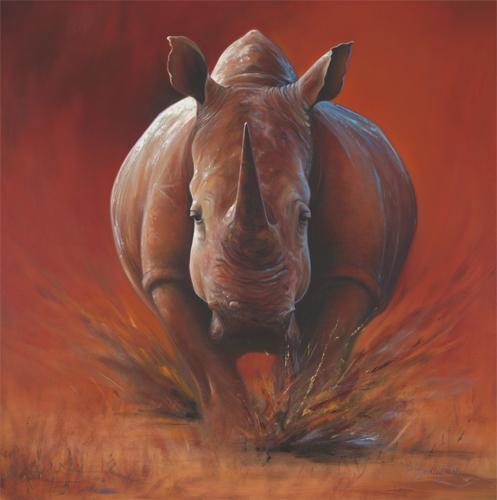 fire rhino