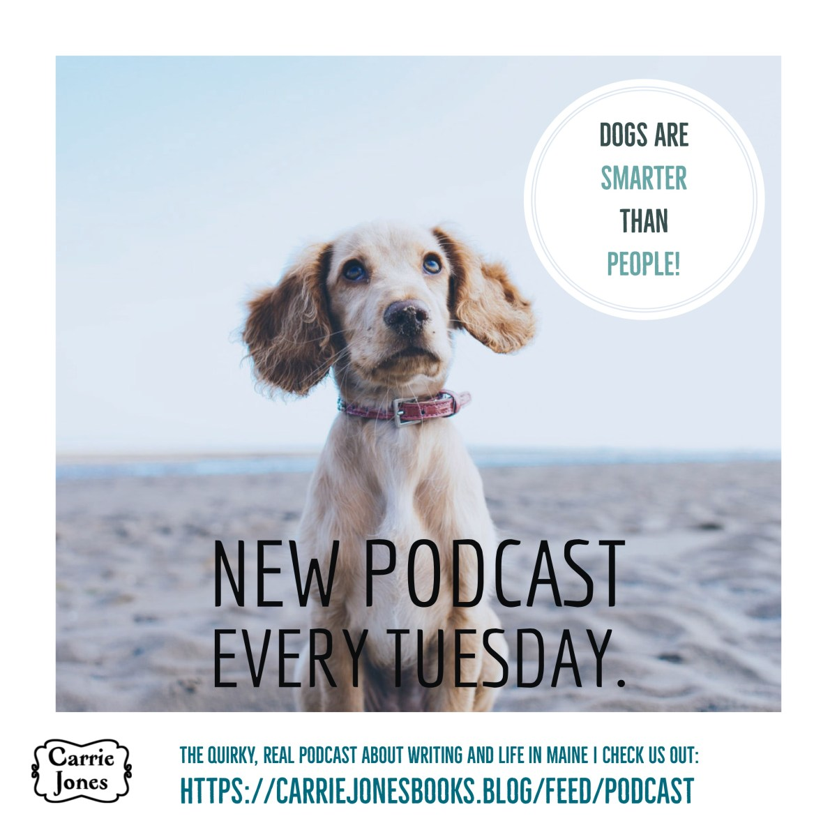 Dogs Are Smarter Than People Podcast New Episode – The Story of Gabby the Rescue Dog and Carrie Tries to Be Alpha