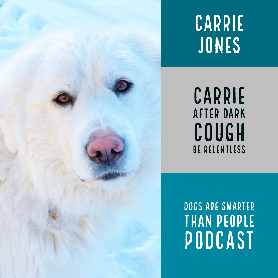 Dogs Are Smarter Than People – Carrie After Dark Is Embarrassing and Relentless. Be Relentless