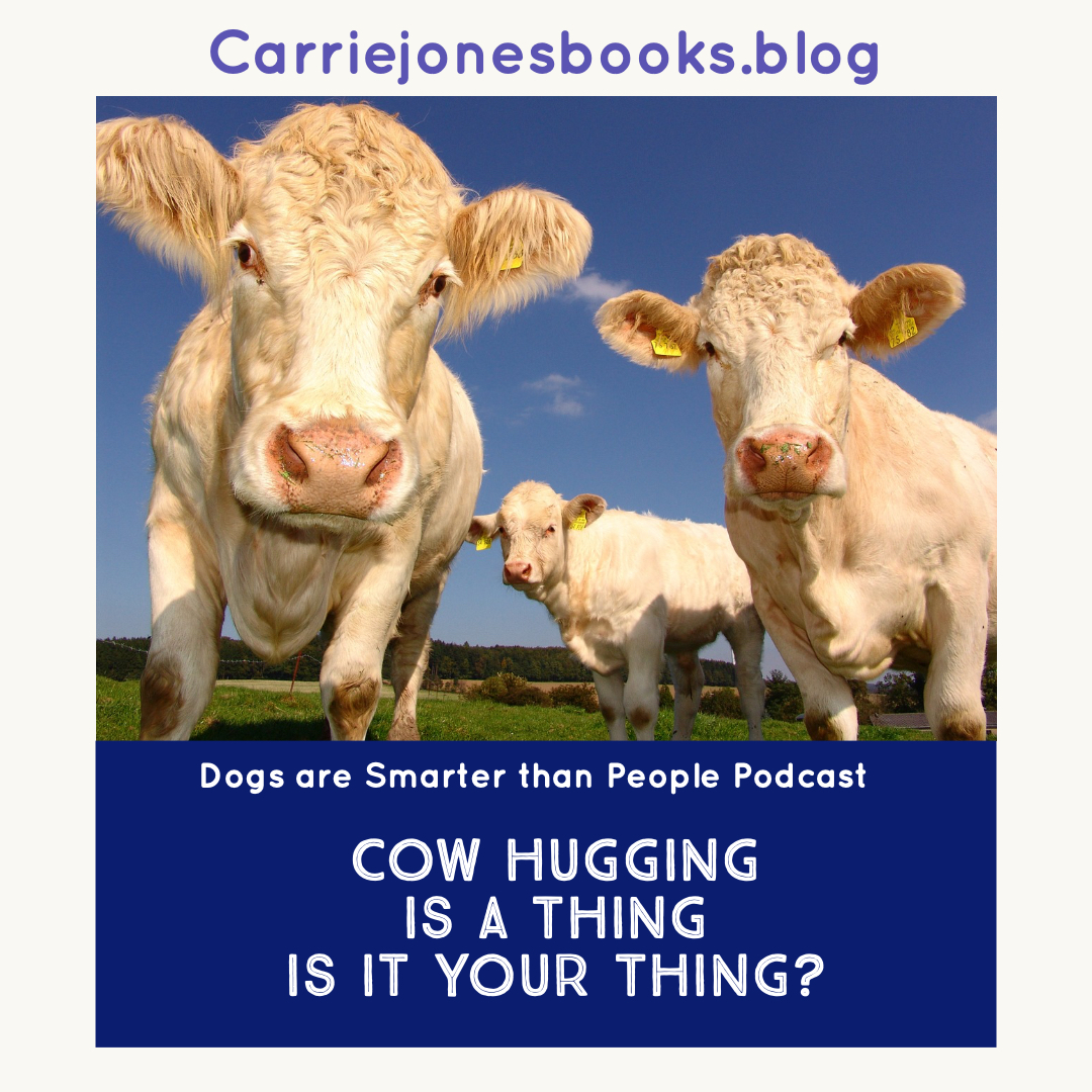 Hug Those Cows – Cow Hugging, Wellness and the Weirdness of this World – Dogs are Smarter Than People Podcast