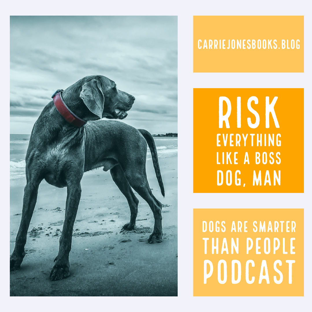 Risk Everything Like A Boss Dog, Man – Dogs are Smarter Than People Podcast