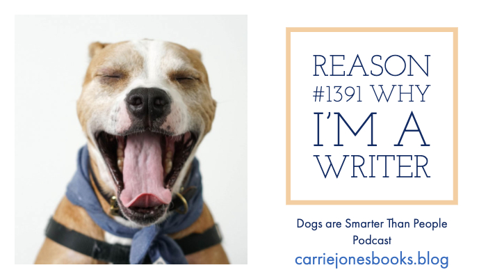 Reason #1391 Why I'm a Writer