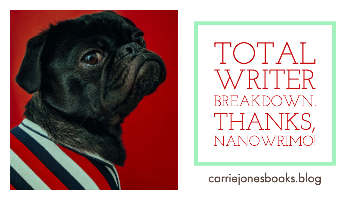 TOTAL Writer NaNoWriMo Breakdown
