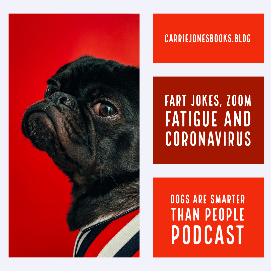 Fart Jokes, Zoom Fatigue and Coronavirus