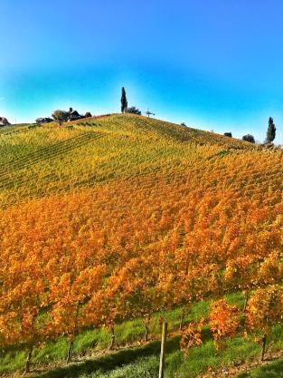 Fall-Herbst-Südsteirische-Weinstraße-Gamlitz-carrieslifestyle-tamara-Prutsch-Reiseblog-Reisebericht-Styria-Austria-Wineyards