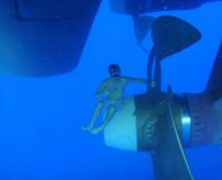 【怖い画像】海が怖い?底が見えない、ナニカいそう、人間が小さく見えるetc…海洋恐怖症かどうか分かる写真