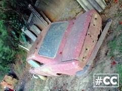Corcel vermelho 4