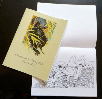 swampwalker coloring book trout
