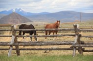 Bremmer Ranch, Bannock Pass Road 9