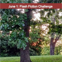 June 1: Flash Fiction Challenge