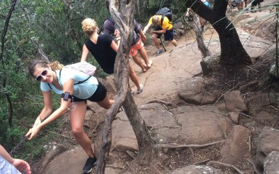 Look Out!, Danger, Warning!…Naaahh I'm hiking up Mount Warning